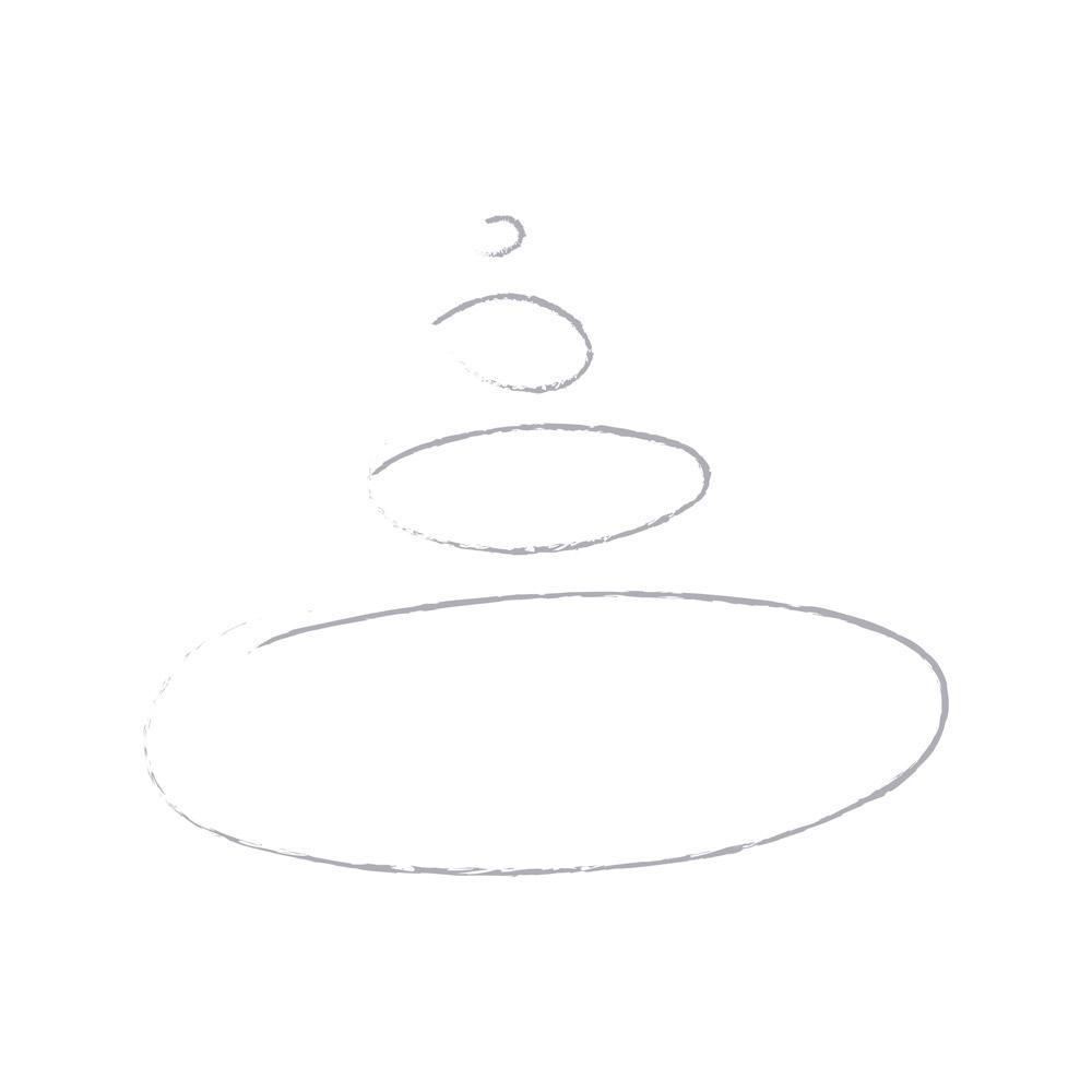 gli ovali servirti come punto di partenza per la creazione del logo e dei caratteri componenti il marchio