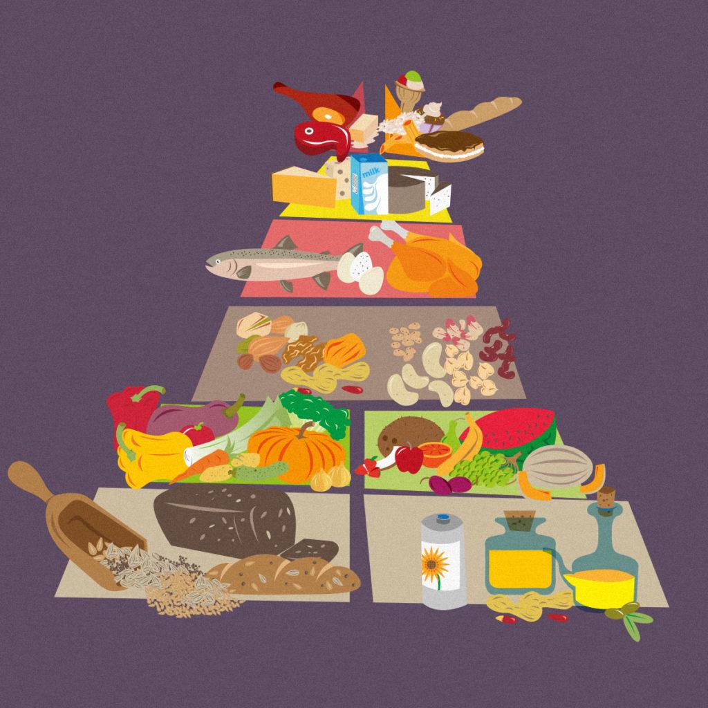 La piramide alimentare divisa in tutte le sue varie parti: carboidrati e grassi vegetali nel gradino più basso, frutta e verdura subito sopra seguite nel gradino successivo da legumi e semi, per poi proseguire con carni bianche, pesce e uova. Nel penultimo gradino troviamo i grassi di derivazione animale, mentre sulla punta della piramide troviamo dolciumi e carni rosse.